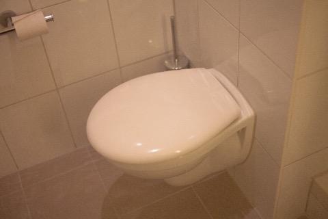 清潔な様式のトイレ